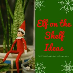 Creative Elf on the Shelf Ideas - Elf Hiding in a House Plant