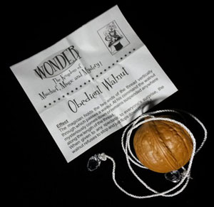 Magician/'s Obedient Commanding Walnut Novelty Classic Nut Close Up Magic Trick