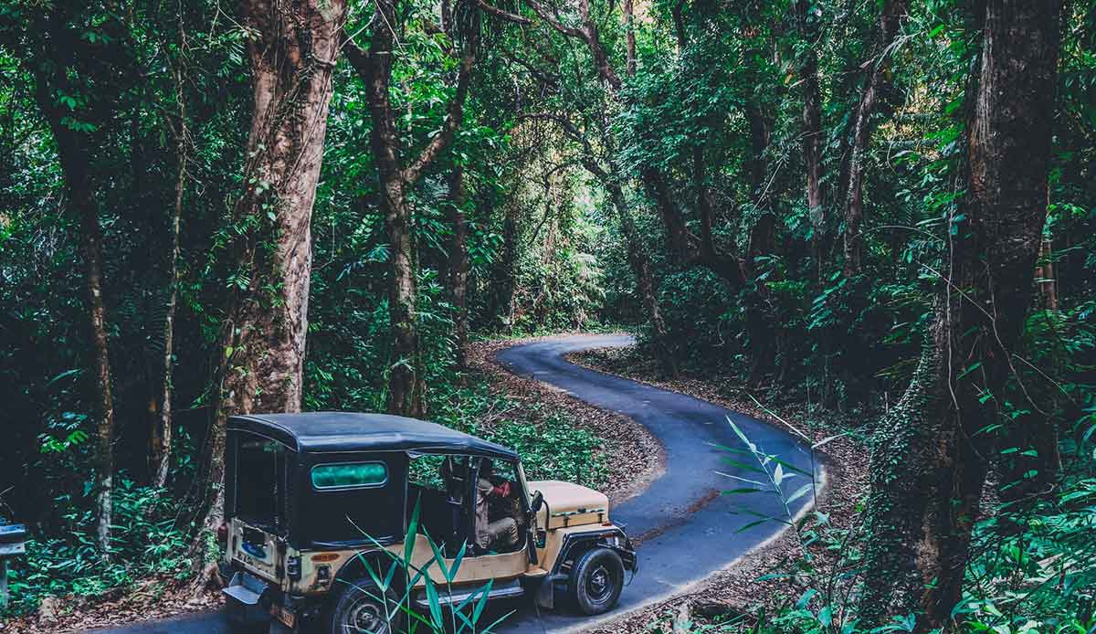 Mount Harriet National Park, Port Blair, India