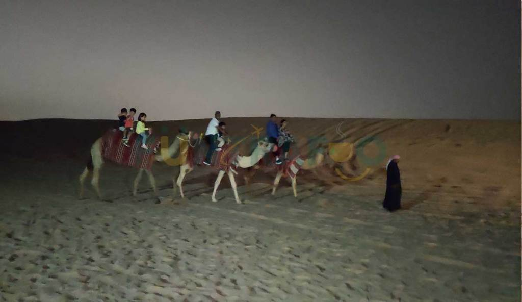 Camel Riding in Desert Safari