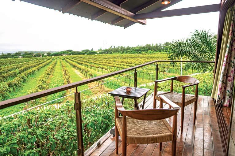 Sula Vineyards - Tree House (Grapes Farm)))