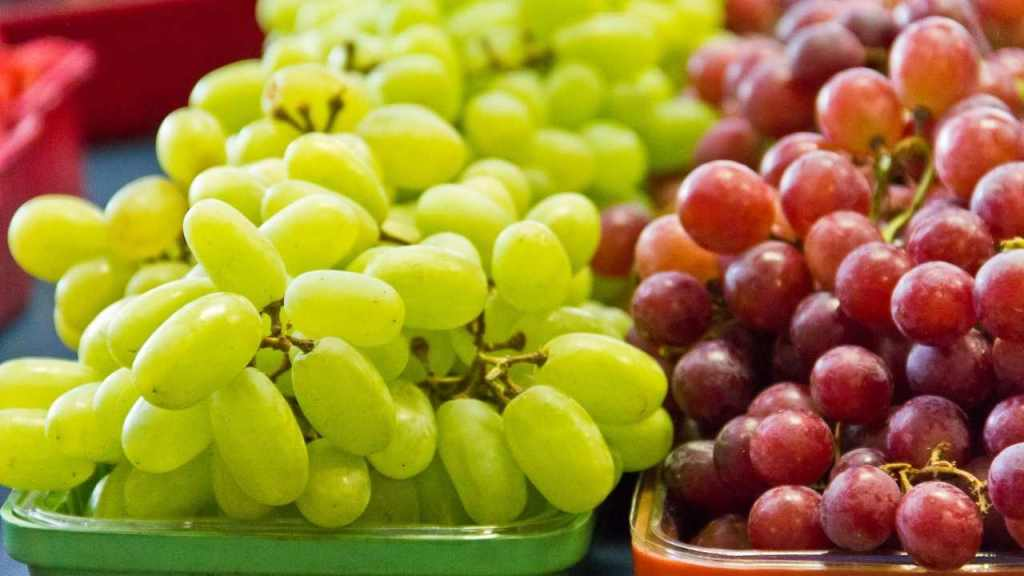 Health benefits of the grapes