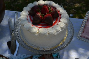 THE CAKE: the cake was a strawberry cake from Neiman Marcus that we added some fresh chocolate covered strawberries to - perfect for the occasion!