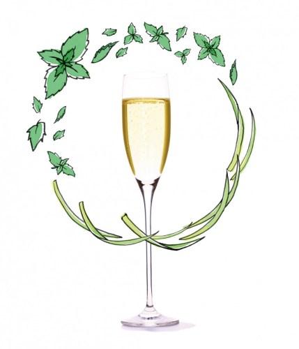 ハーブスパークリング ペパーミント&レモングラス