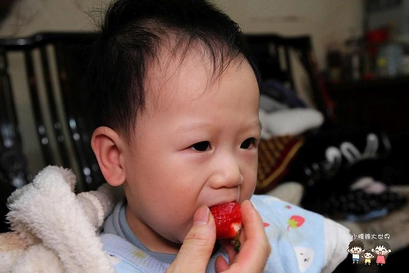 彰化草莓 015