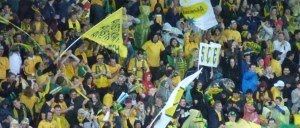 Image: Asian Cup 2015 - Australia v Kuwait. Source: From the Stands