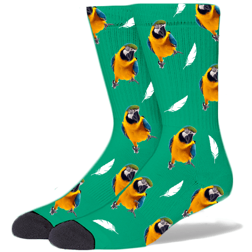 FurbabySocks Custom Green Bird Socks