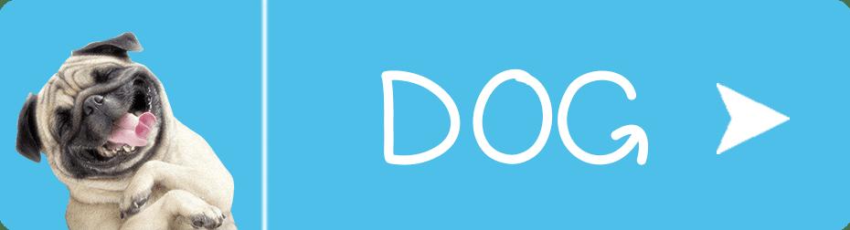 FurbabySocks Dog Button