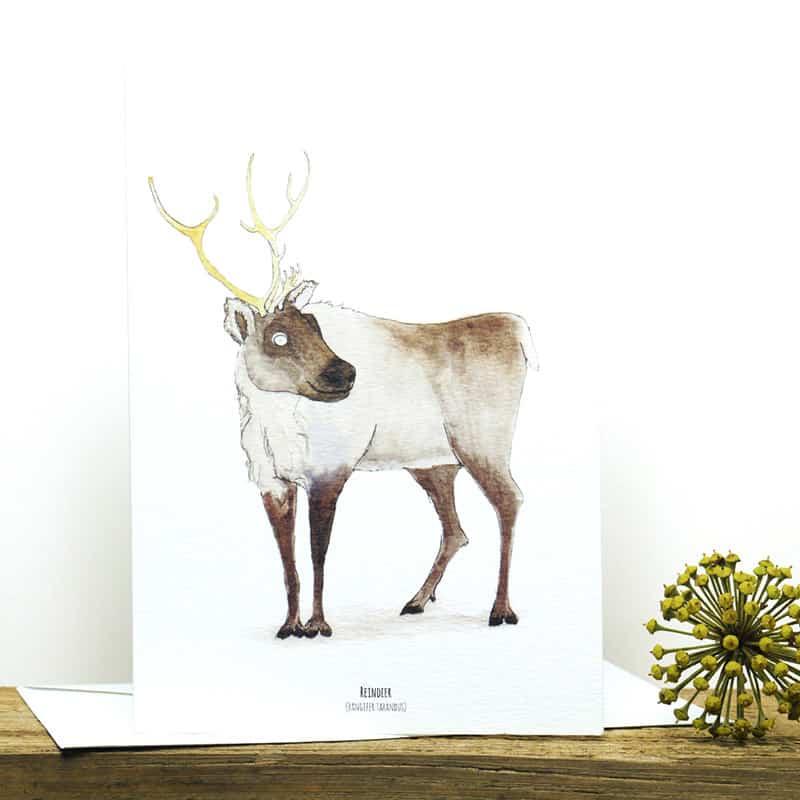 12 Days Of Christmas Card SetPacks Of 3 9 Amp 15 Fur