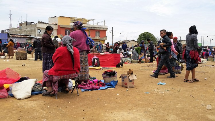 san francisco el alto animal market