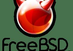 Metin2 FreeBSD 10.2 Kurulumu (Resimli Anlatım)