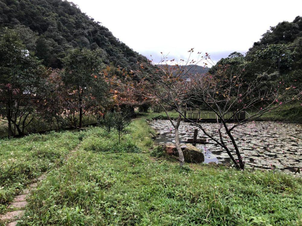 苓蘭生態農園 12 Travel of Rice 小米遊記