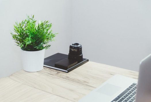 a small plant on a table with a laptop, black notebook, and camera lens