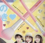 Ranzuki ランズキ 2016年 7月号【付録】Only LOVE daily オンリーラブデイリー コスメブラシ3本セット
