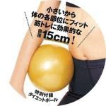 世界一下腹が凹む! ライザップ式「ダイエットボール」 【付録】 ライザップ式 ダイエットボール