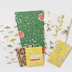 天然生活 2020年 2月号 【付録】 綴じ込み付録  イイダ傘店デザインのぽち袋