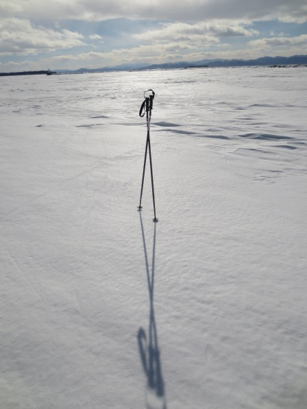 A pair of ski poles we found sticking into the ice of the harbor -- with no tracks near them. They'd apparently been there for a while.