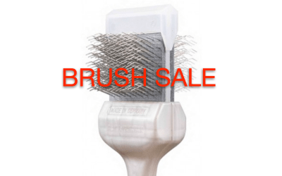 Brush sale now on