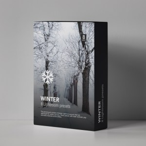 Winter presets for Adobe Lightroom by Furstset