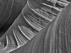 Wave Monochrome #5