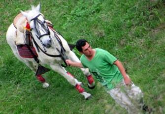 Listo el caballo