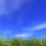 疲れ目にもおすすめ!空を眺める瞑想の効果・メリット・やり方とは