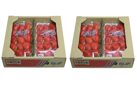 香川県オリジナル品種!さぬきひめ苺 1.1kg※クレジット決済のみ イメージ