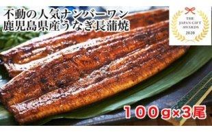 【数量限定】鹿児島県産うなぎ長蒲焼3尾(約100g×3尾)
