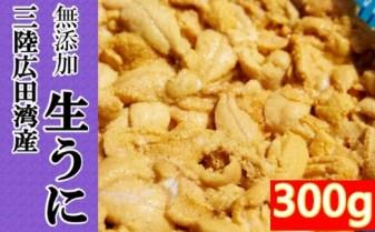 【2021年度予約】広田湾の生ウニ300g