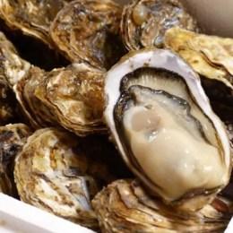厚岸町の牡蠣