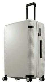 日本製スーツケース ace.ウォッシュボードZ 91L (ギンネズグレー)