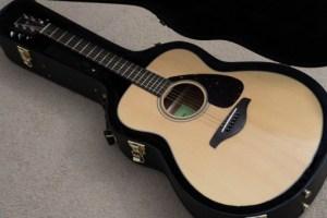 バンブーギター(ギターケース付)