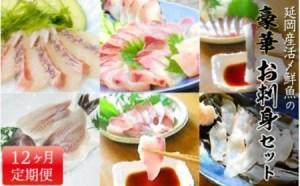 延岡産活〆鮮魚の豪華お刺身(12ヶ月定期便)
