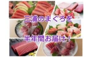 三崎港直送まぐろのお刺身半年定期便(6回配送)