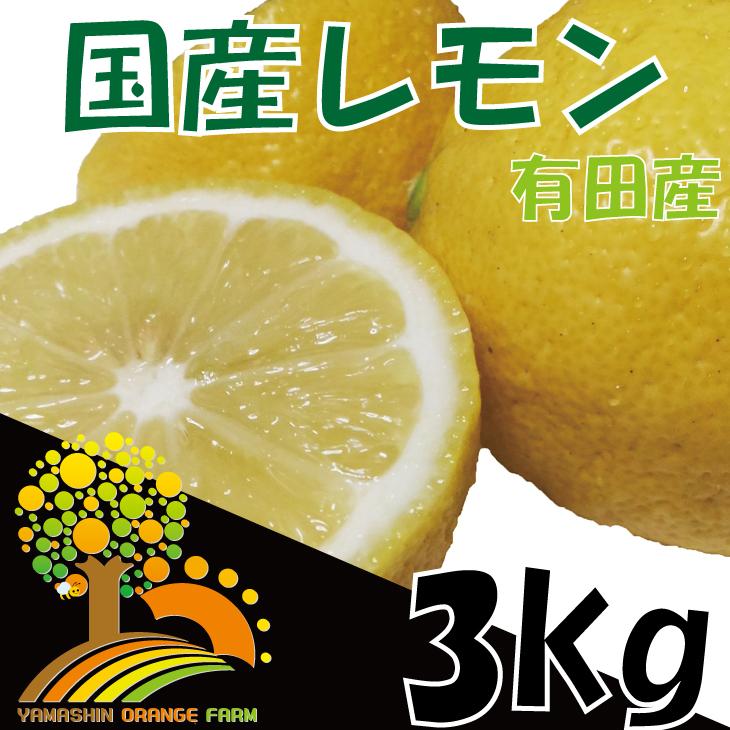 安心安全の国産レモン 省農薬栽培 約3kg イメージ