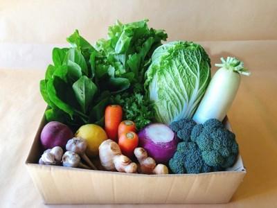 越知町産季節の野菜セット(年1回発送) イメージ