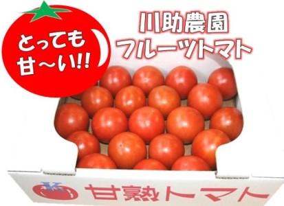 とっても甘~い!川助農園のフルーツトマト1.5kg以上 イメージ