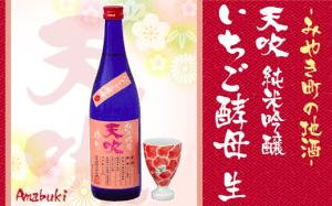 みやき町の地酒「天吹」純米吟醸 いちご酵母 生&かんぱいこっぷ