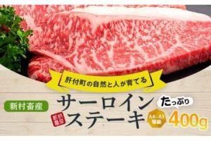 鹿児島県産黒毛和牛サーロインステーキ〈約200g×2枚〉