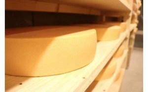 【第5位】ラクレットチーズ ホールサイズ