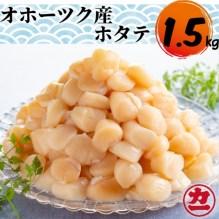 オホーツク産ホタテ(1.5kg)