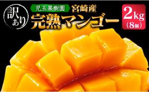 【第5位】「訳あり」「南国宮崎からお届け」児玉農園 完熟マンゴー(L~Mサイズ)8個 約2kg