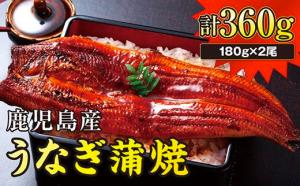 鹿児島県産うなぎ360g(180g×2尾)