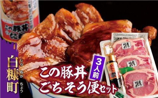 【新型コロナ被害支援】この豚丼 ごちそう便セット【3人前】(9,000円)