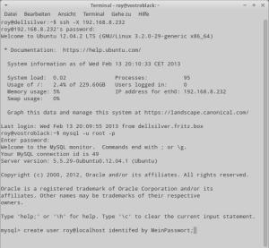 Die MySQL-Ansicht in der Konsole.