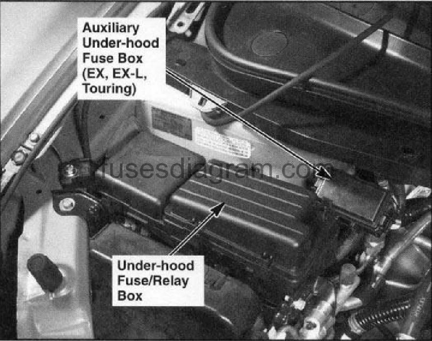 Fuse Box Honda Odyssey 2003-2008