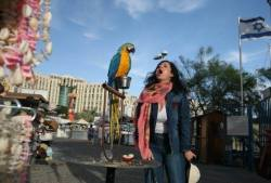 Amalia sings to parrot in Eilat