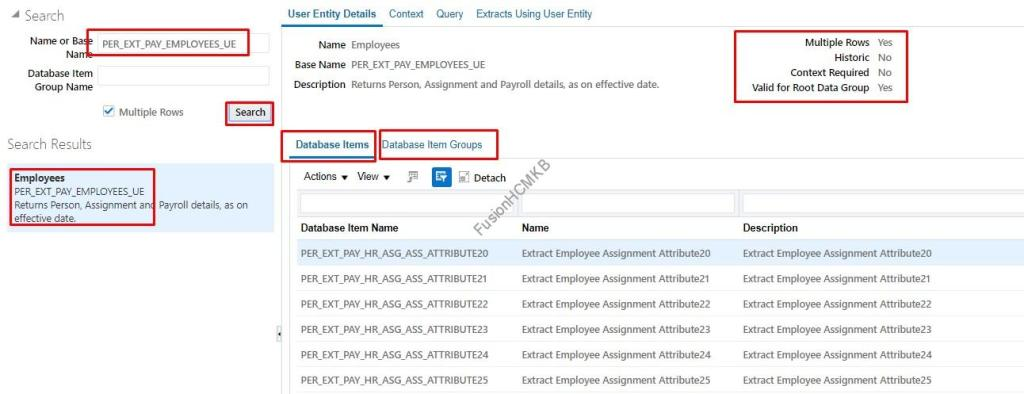User Entity details for hcm extracts tips and tricks fusion hcm oracle hcm cloud