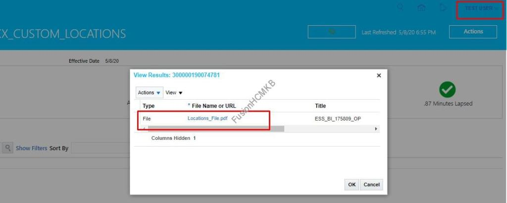 TEST.USER is able to see the output of hcm extract from payroll checklist in fusion hcm