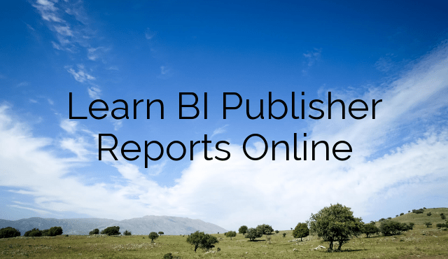 Learn BI Publisher Reports Online